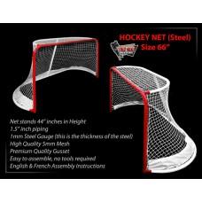 Street Hockey (20)