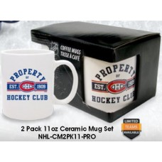 Hockey Collectables (9)